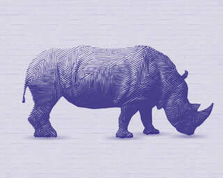 Fototapete «Rhinoceros Purple» DD112541